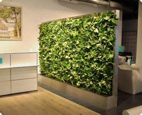 pflanzen als raumteiler pflanzenwand als raumteiler wohnung in 2019