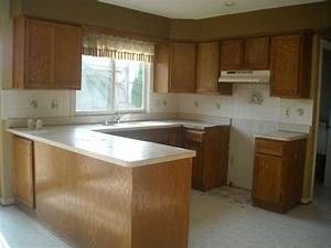 painted oak cabinets grain home ideas collection With kitchen colors with white cabinets with plywood wall art