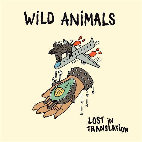 sensual pop punk rockers wild animals premiere