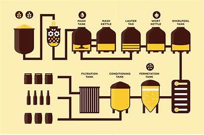 Beer Brewing Vector Infographic Brewery Clipart Process