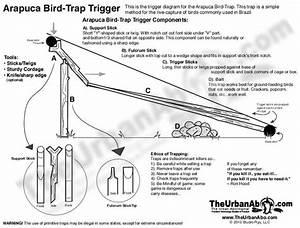 102 Best Survival  Traps  U0026 Triggers Images On Pinterest