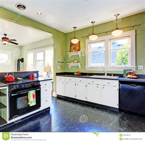 Green Kitchen Cabinets With Black Appliances by Kitchen Room Interior Stock Photo Image 40419574