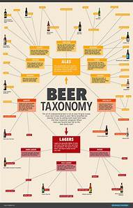 Everything You Need To Know About Beer  In One Chart