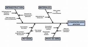 Sistemas Erp  Diagrama Causa Efecto
