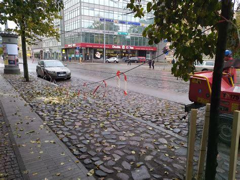 Bebri Rīgas centrā iejutušies ļoti labi: uzdarbojas jau uz galvenajām ielām - Jauns.lv