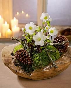 Blumen Zu Weihnachten : christrose pinteres ~ Eleganceandgraceweddings.com Haus und Dekorationen