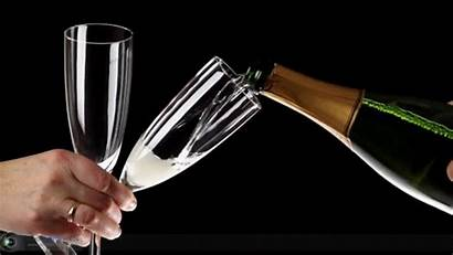 Champagne Alcohol Glass Boisson Meilleure Gifs Happy