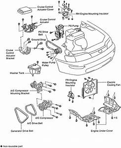 Schematics And Diagrams  Toyota Water Pump Replacing For