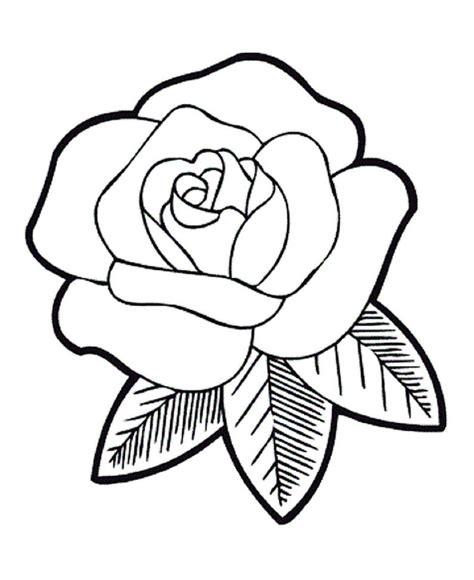 gambar bunga animasi hitam putih harian nusantara