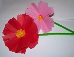 Blumen Aus Seidenpapier : kosmee schmuckk rbchen bastelfrau ~ Orissabook.com Haus und Dekorationen