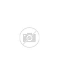 Apple Blossoms Spring Landscapes Wallpaper