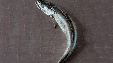 cuisiner le colin cuisiner le merlu colin conseils de préparation et