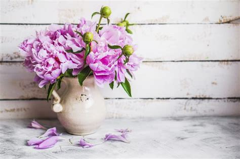 How To Cut Peonies For A Vase