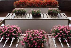 Blumenkästen Bepflanzen Ideen : blumenkasten mit wasserspeicher richtig nutzen ~ Eleganceandgraceweddings.com Haus und Dekorationen