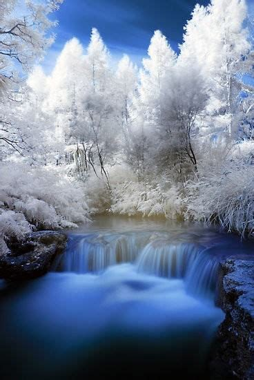 Winter In New Zealand Credit Ir Photography Majestic