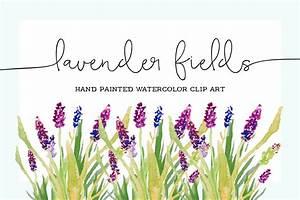 Watercolor Lavender Clip Art ~ Illustrations ~ Creative Market