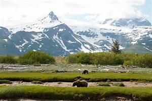 Katmai National Park & Preserve MowryJournal com