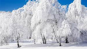 HD Winter Wallpapers 30 – HdCoolWallpapers.Com