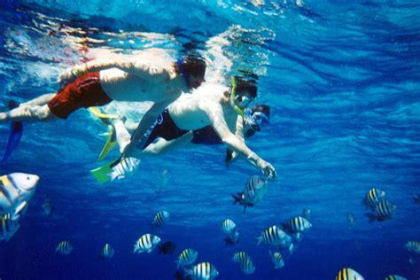 snorkeling wikipedia