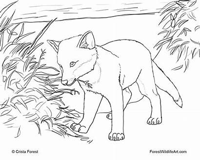 Coloring Fox Pages Hound Swiper Popular