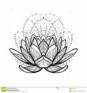 Dessin Fleurs De Lotus : fleur de lotus dessin lin aire stylis complexe d 39 isolement sur le fond blanc illustration de ~ Dode.kayakingforconservation.com Idées de Décoration