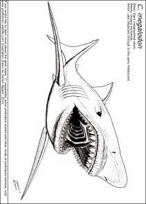 HD wallpapers megalodon shark coloring page