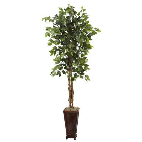 6 5 silk ficus tree with decorative planter artificial