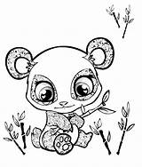Coloring Cute Pages Animals Baby Panda Comments sketch template