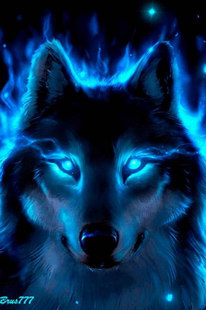 Wolf Imagem Tigre Lobo Wild Animals