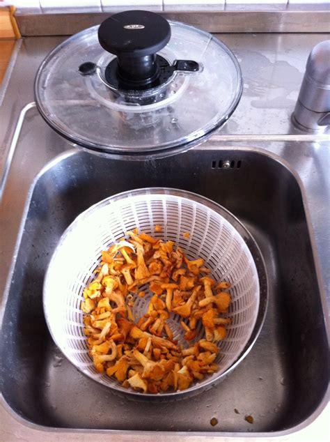 cucinare i finferli freschi finferli freschi con pasta di gragnano