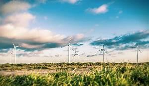 Nachhaltig Leben Und Konsumieren : privatpersonen und unternehmen in der pflicht nachhaltig produzieren und konsumieren ~ Yasmunasinghe.com Haus und Dekorationen