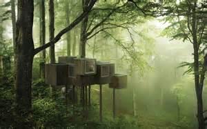 triumph architectural treehouse award 2014 a e architect