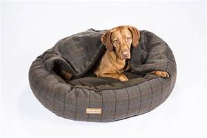 collared creatures comfort cocoon dog bed extreme cosiness With extreme dog beds