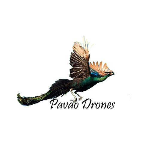 pavao drones youtube