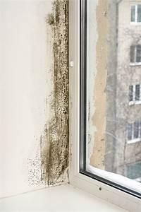 Feuchtigkeit In Der Wand : feuchtigkeit in der wand tipps und tricks gegen feuchtigkeit ~ Sanjose-hotels-ca.com Haus und Dekorationen