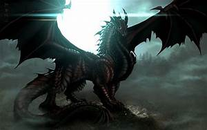 Another cool black dragon | Dragon Pictures I like | Pinterest