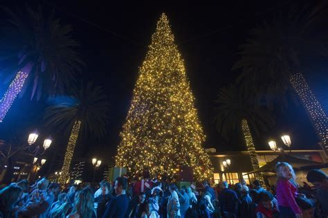 christmas light up in fashion island fashion island lights up its 90 foot tree for the holidays daily pilot