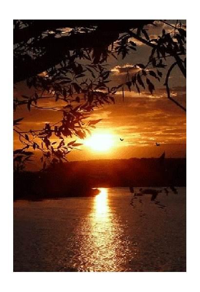 Moon Sol Sunrise Puesta Soleil Sunset Gifs