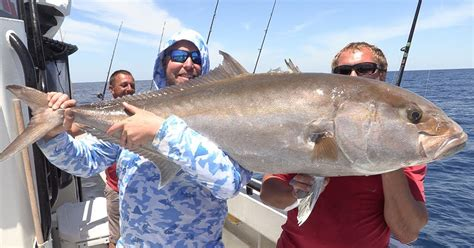 amberjack fishing hubbard monster grouper offshore marina boat comments