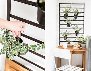 Pflanzen Für Schattigen Balkon : welche balkonpflanzen m gen es sonnig welche lieben den ~ Watch28wear.com Haus und Dekorationen