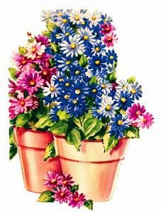 Antique, Images, Daisy, Flower, Pot, Free, Digital, Botanical, Art, Clip, Art