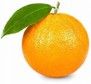 La terre est bleue comme une orange analyse for Commentaire faire la couleur bleu 1 la terre est bleue comme une orange analyse