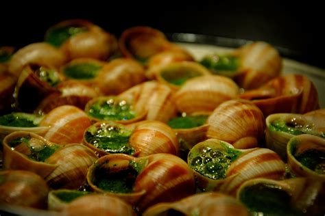 escargot cuisiné 9 foods your might actually eat matador