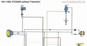 Moped Turn Signal Wiring Diagram