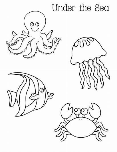 Octopus August Sea Under Coloring Preschool Pages