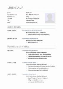 Lebenslauf Online Bewerbung : bewerbungsmuster krankenpfleger lebenslauf designs ~ Orissabook.com Haus und Dekorationen