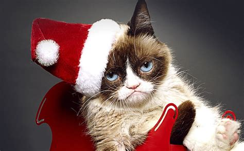 Grumpy Cat's Worst Christmas Ever  Premier Trailer