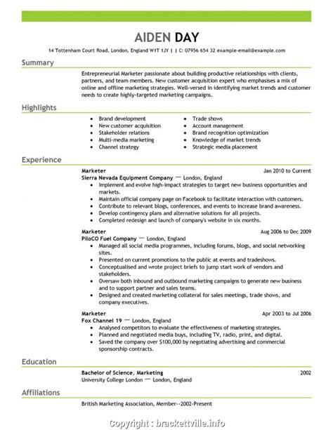 Marketing Cv by Professional Cv Format For Marketing Resume Templates