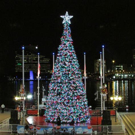 christmas trees jacksonville fl jacksonville events 9186