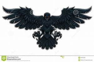 Raven - Download From Over 53 Million High Quality Stock ...